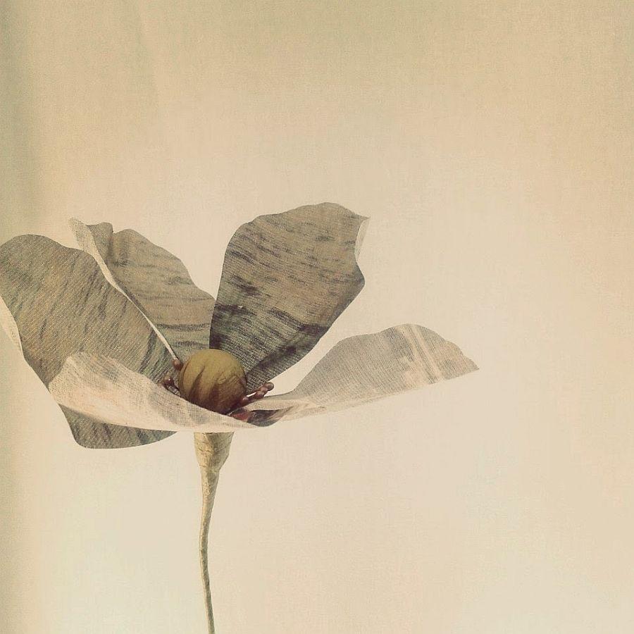 adelaparvu.com despre flori, frunze, pene de bumbac imprimate cu imagini vintage, artist Miranda van Dijk, Puur Anders (43)