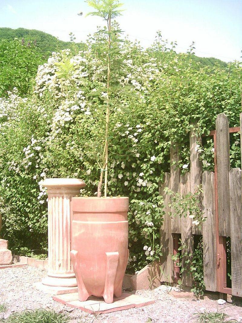 adelaparvu.com despre vase, ghivece, statuete, jardiniere din teracota, design Terecote, Sighisoara (9)