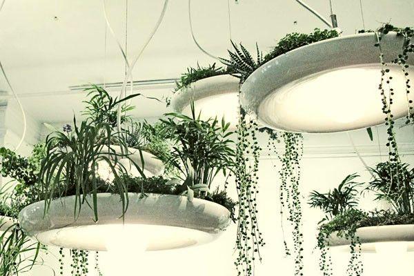 adelaparvu.com despre lampa suspendata cu plante, lampa Babylon, designer Ryan Taylor, Object Interface(5)