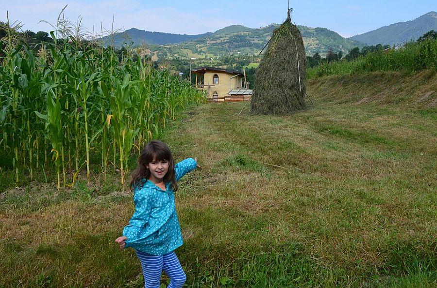 adelaparvu.com despre casa din baloti de paie Popasul Verde, Sangeorz Bai, Romania, proprietar Paul Axinte (4)