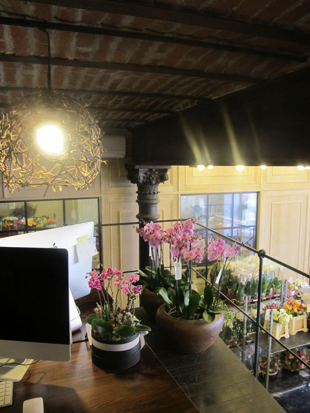 adelaparvu.com despre atelierul designerului florist Nicu Bocancea, Foraria Iris, design interior Pascal Delmotte (34)