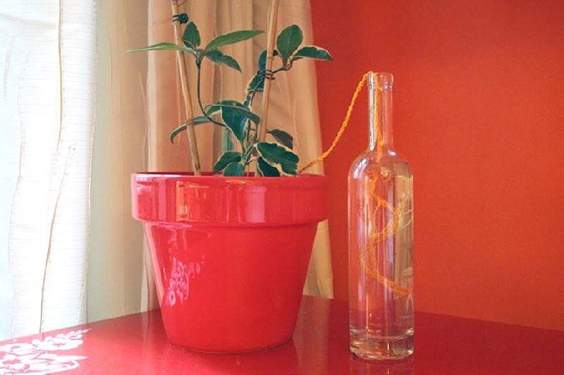 adelaparvu.com despre cum uzi plantele cand pleci in vacanta, Text Carli Marian (5)