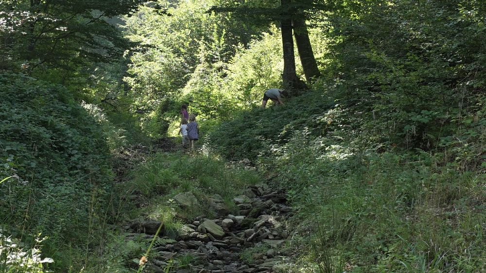 adelaparvu.com despre Alexandra Teodor si Stefan Carstea peisagistii care s-au mutat la tara in Cartisoara (19)