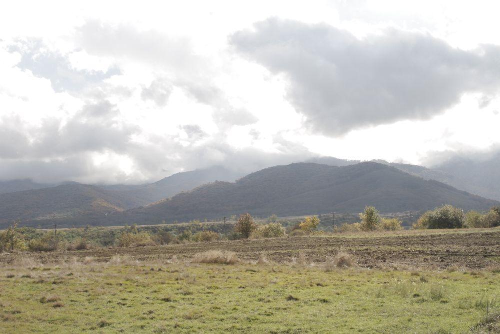 adelaparvu.com despre Alexandra Teodor si Stefan Carstea peisagistii care s-au mutat la tara in Cartisoara (4)