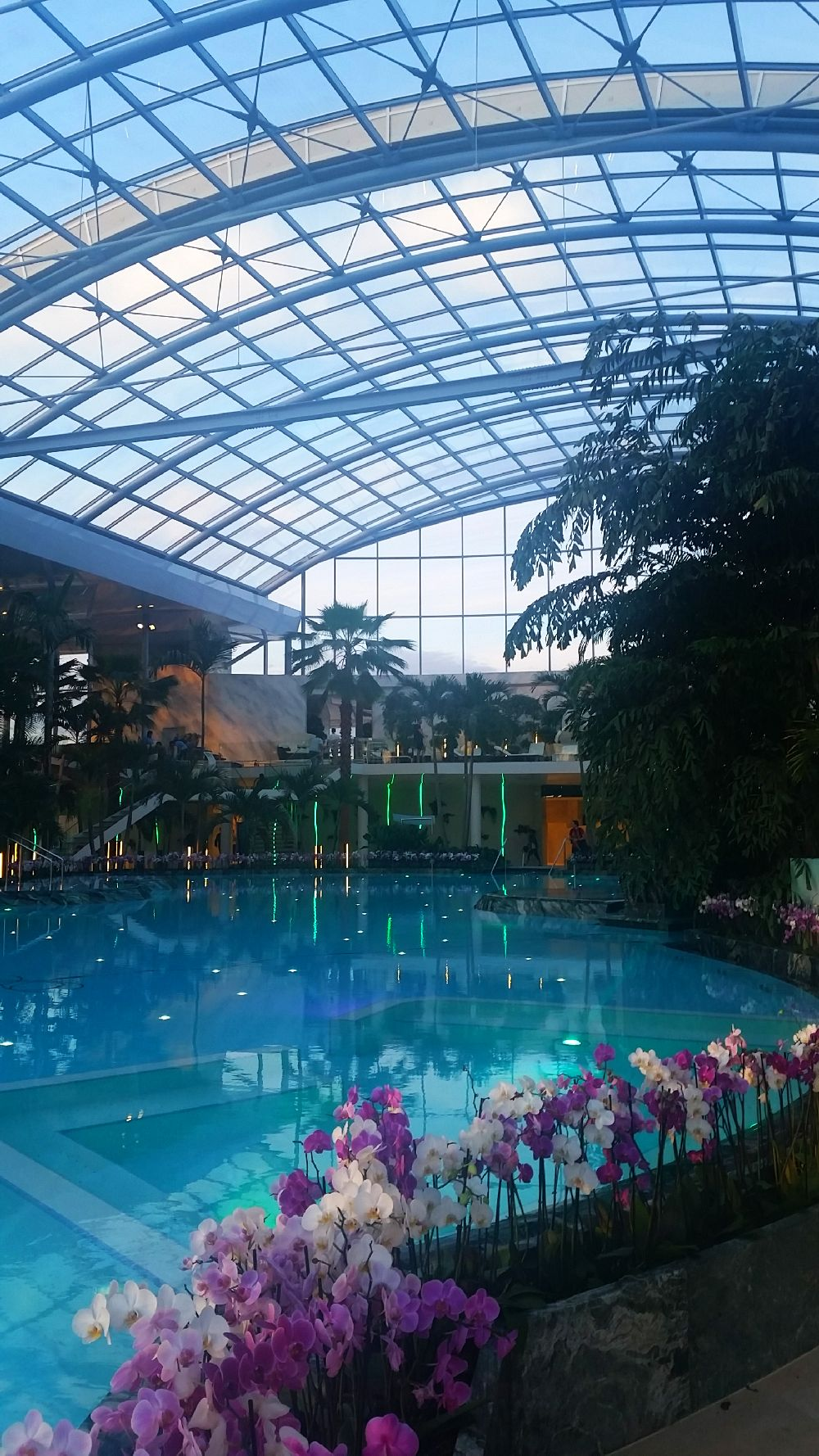 adelaparvu.com despre Therme Bucuresti, zona The Palm (29)