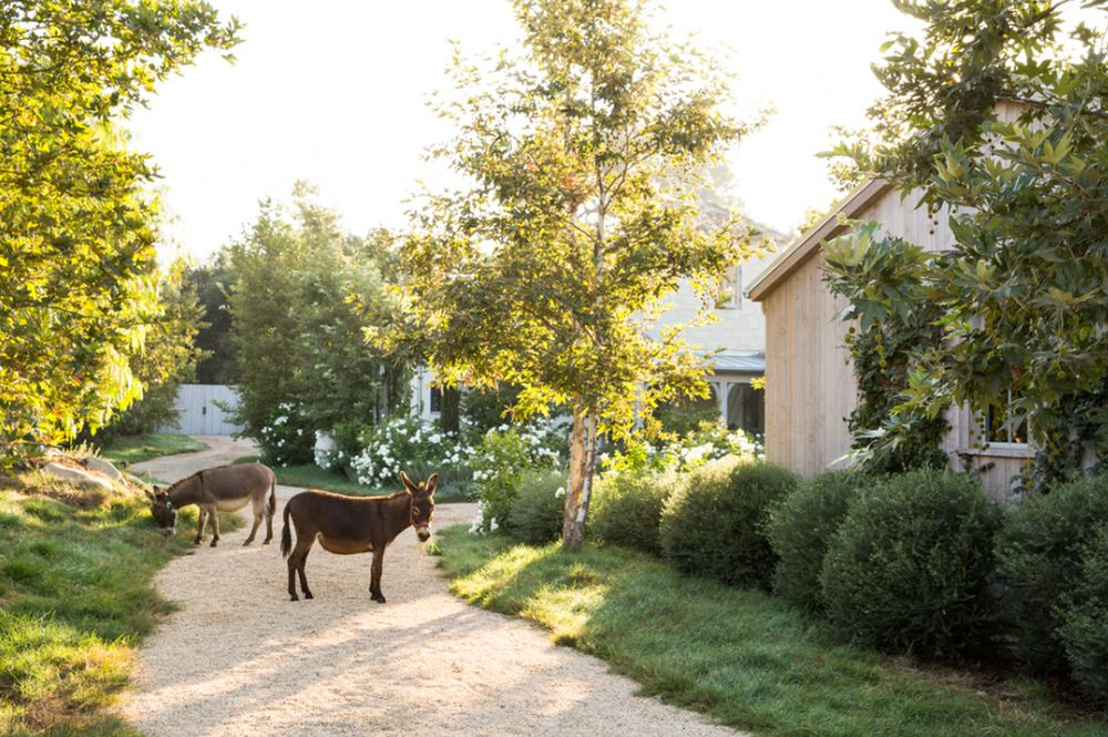 adelaparvu.com despre Patina Farm, California, arhitectura si design Giannetti Home (5)