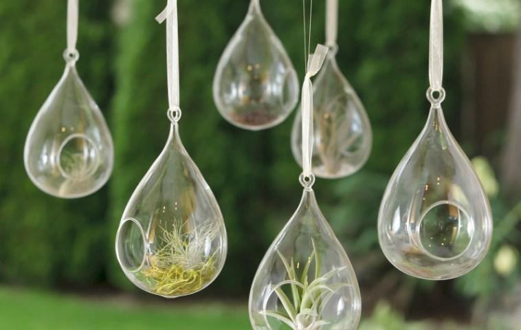 adelaparvu.com despre flori de aer in globuri de sticla, Text Carli Marian (3)