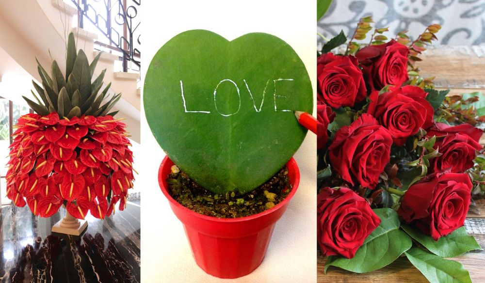 Trei simboluri florale ale iubirii