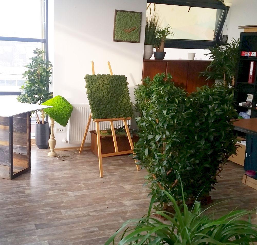 adelaparvu.com despre tablouri cu plante stabilizate, design Arta Gradinilor, Bucuresti (11)