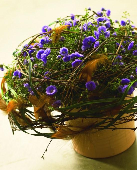Aranjament de Paste cu Campanula haylodgensis. Uita-te la combinatia de culori si decorul cu crengi pentru inspiratie.