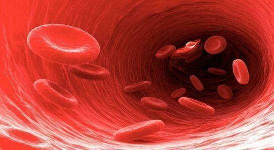 sangre biodescodificacion