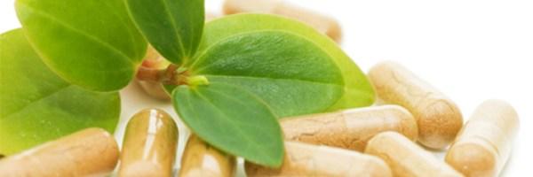 Hierbas para adelgazar y sus efectos en un plan para bajar de peso
