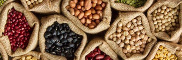 4 Razones para incluir porotos en tu dieta para adelgazar