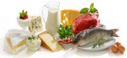Proteína para adelgazar, razones para incluirla en la dieta