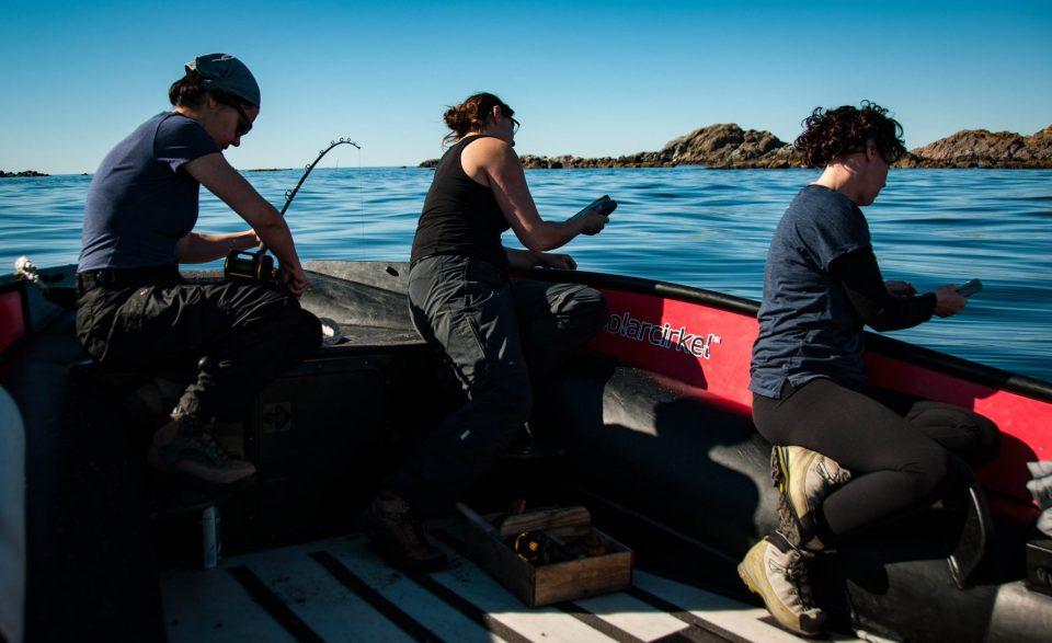 la pescuit in Arctic