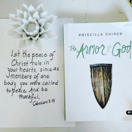 Armor of God 6