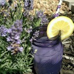 For Purple Jars and Lemonade