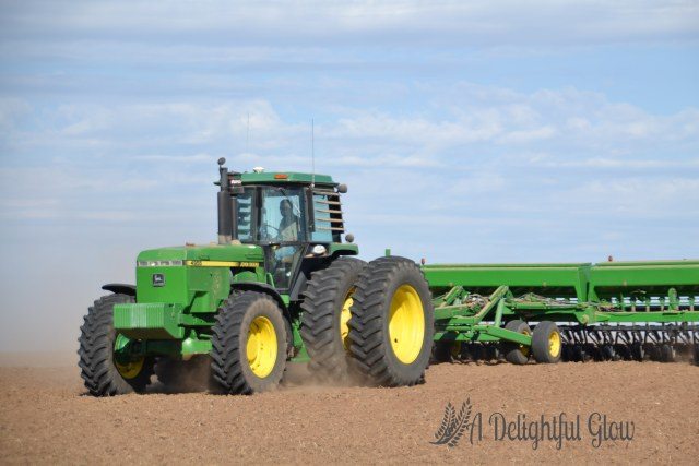 drilling-the-wheat-2016-10