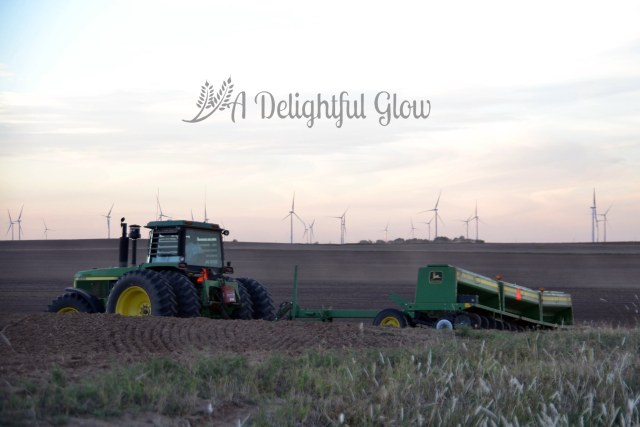 drilling-the-wheat-2016-7