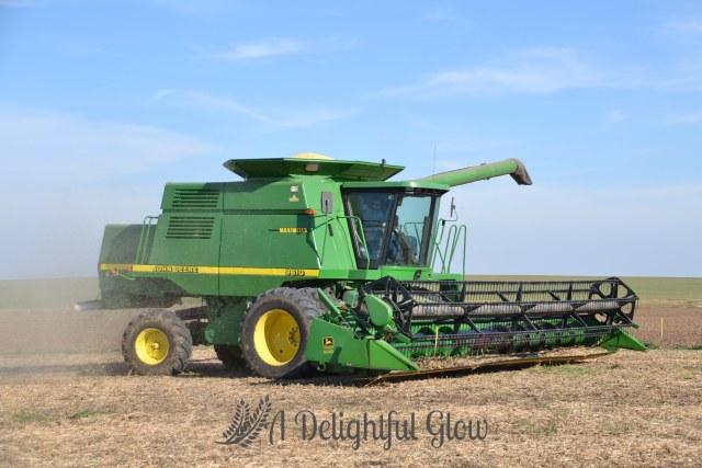 soybean-harvest-2016-9