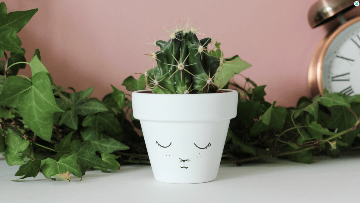 Adorable-Cat-Plant-Pot