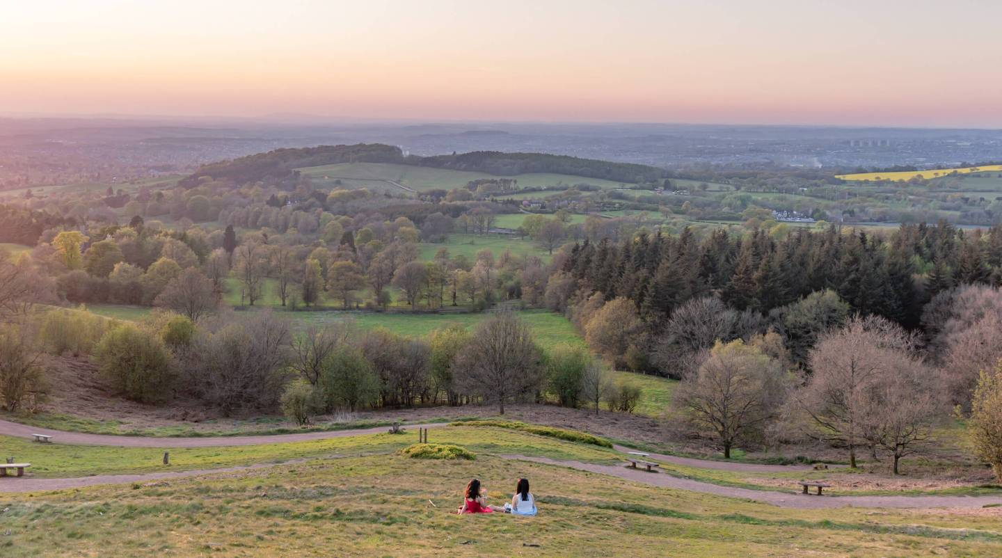 Exploring Bluebells In The West Midlands | Clent Hills