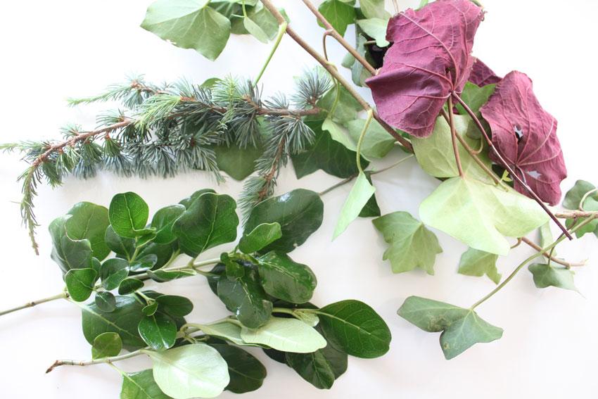 Glycerin preserved leaves