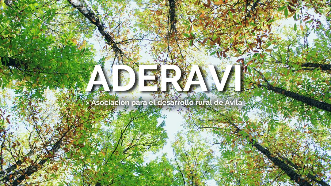Bienvenidos a la Web de Aderavi