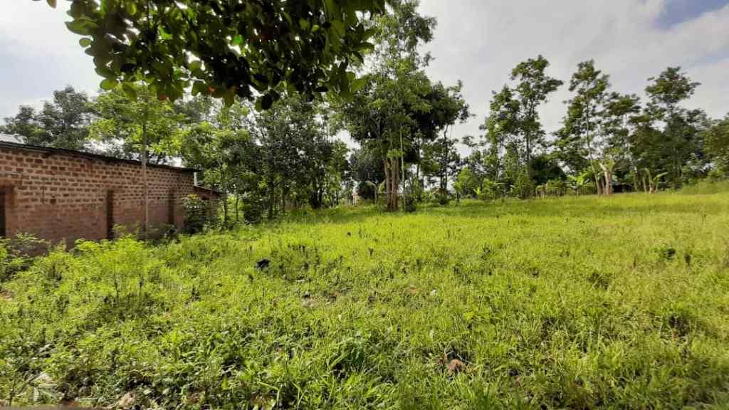 Bombo land sale