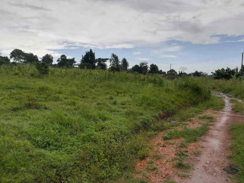 land in nakisunga
