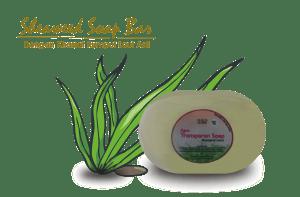 Sabun Rumput Laut (Sheaweed Soap) Untuk Mencegah Penuaan Dini