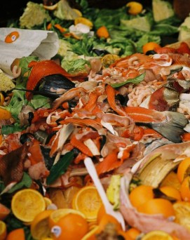Image of food waste with orange peels, salmon fish bones and skin, lettuce leaves, with a spoon and some paper mixed in.