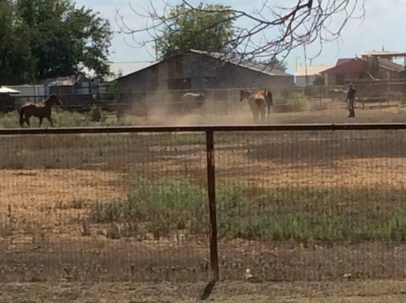 Inmediaciones de la Parroquia del ignoto pueblo de Strawn (Texas)