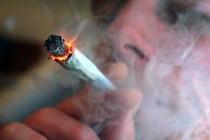 cannabis_tsigaro