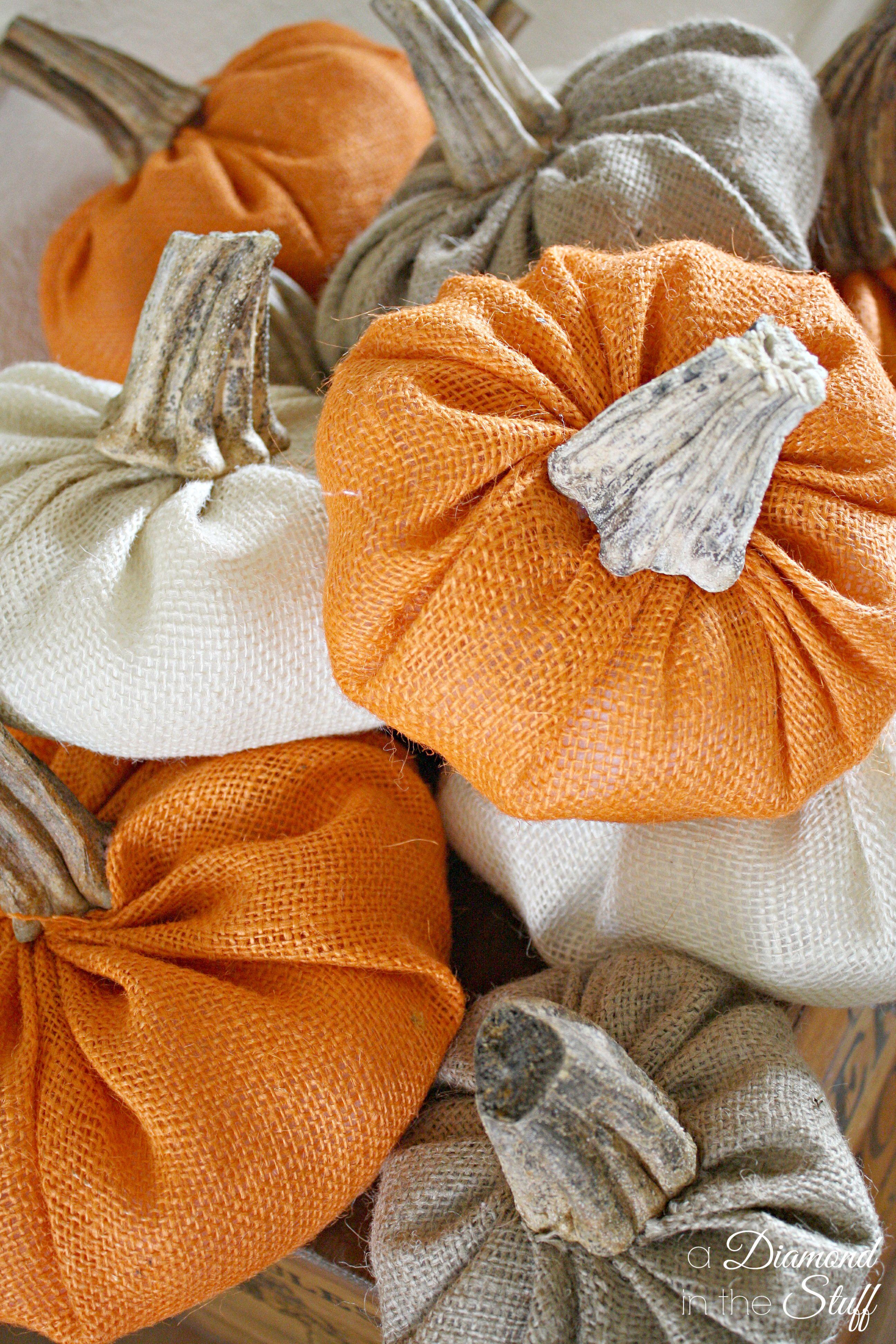 Pumpkin stems for crafts - Pumpkin Stems For Crafts 9