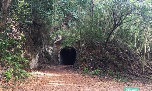El Túnel Negro