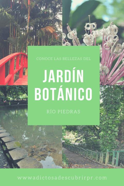 Jardin Botanico de Rio Piedras - Adictos a Descubrir PR
