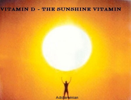 Health and Vitamin D The Vital Connection1 adidarwinian