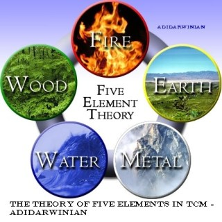 The Theory of Five Elements in TCM - Adidarwinian