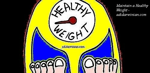 Maintain a Healthy Weight - Adidarwinian