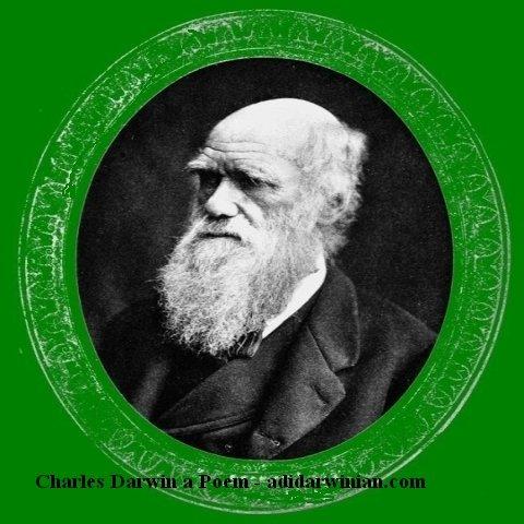 Charles Darwin a Poem by adidarwinian