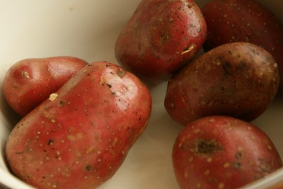 patatas bravas 01