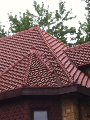 St Paul Reptiliant Roof 2