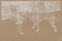 Untitled, white transfer paper on Stonehenge Kraft, 2018