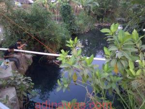 Sungai Tempat Mancing Di Jogja