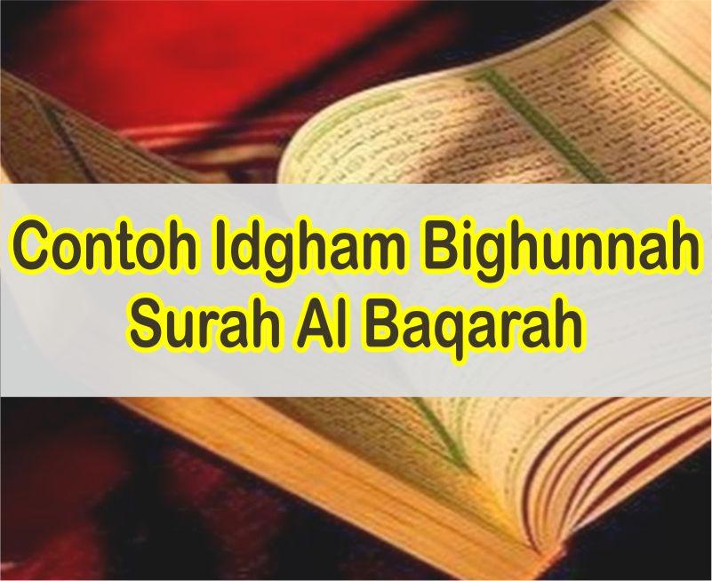 Contoh Bacaan Idgham Bighunnah Dalam Surah Al Baqarah Dan Ayatnya