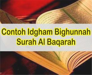 20 Contoh Bacaan Idgham Bighunnah Dalam Surah Al Baqarah Beserta Ayatnya