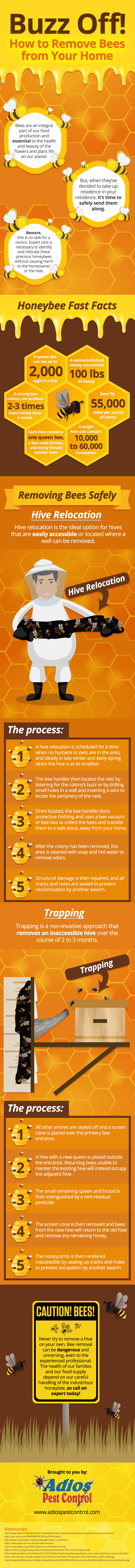 infographic sharing how to remove bees from your home