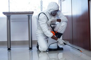 A pest control professional sprays for insects at a business.