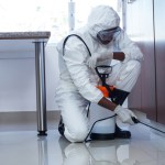 7 Reasons Your Business Needs Our Integrated Pest Management